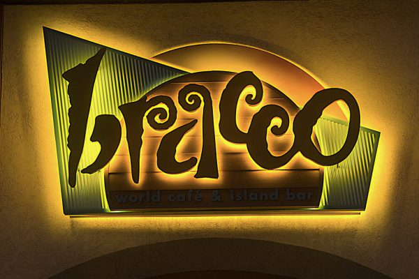 Bracco Custom Sign