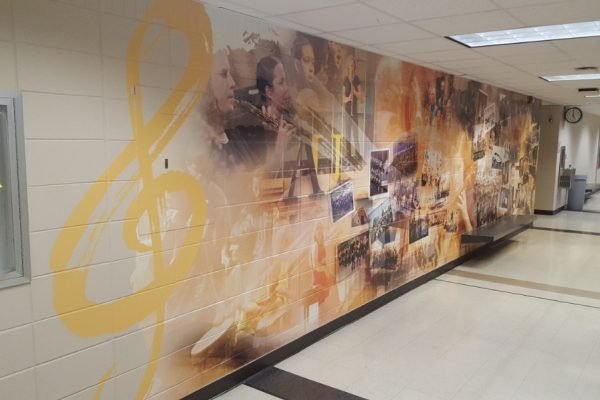 Augustana University custom wall graphics